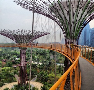 "walking through the ""Super Trees"" in Singapore's Gardens by the Bay"